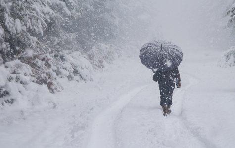 Overcoming the Winter