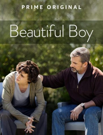 Beautiful Boy: A Devastating Reality